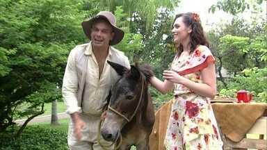 Monica Iozzi e Otaviano Costa entrevistam o burro de Êta Mundo Bom! - Policarpo é o companheiro do protagonista Candinho na nova novela das 6