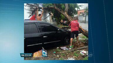 Telespectadores enviam flagrantes de transtornos causados pelas chuvas - Posto de saúde no Bairro Messejana fica alagado e árvore cai em cima de carro.