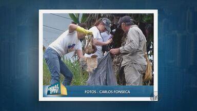 Telespectadores do Sul de Minas enviam imagens de mutirões de combate ao Aedes aegypti - Telespectadores do Sul de Minas enviam imagens de mutirões de combate ao Aedes aegypti