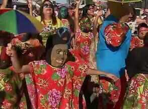 Crianças curtem a folia vestidas de papangu, em Bezerros - Bloco saiu às ruas neste sábado (6).