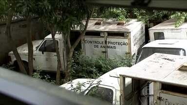 Mais de 5 mil imóveis estão na mira da prefeitura no mapa de risco do Aedes Aegypti - Levantamento da prefeitura de São Paulo, que o SPTV teve acesso, aponta mais de 5 mil endereços da capital que precisam de vigilância reforçada contra o mosquito Aedes Aegypiti.