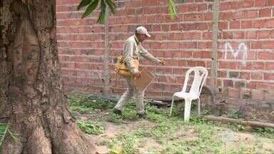 Agentes e população fazem mutirão contra o Aedes Aegypti em José de Freitas - Agentes e população fazem mutirão contra o Aedes Aegypti em José de Freitas