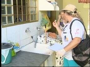 Mutirão de combate à dengue percorre bairros de Presidente Prudente - Mais de 200 pessoas trabalham neste sábado (13) para eliminar criadouros do mosquito Aedes aegypti.