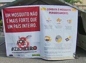 Campanha de combate ao Aedes Egipty é realizada no Agreste - Este sábado (13) é o Dia Nacional de Combate ao mosquito.