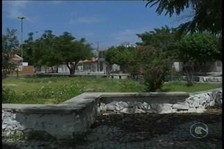 Após as chuvas, mato cresce nas praças de bairros de Petrolina - Em praças, pontos turísticos e monumentos são encontrados mato.