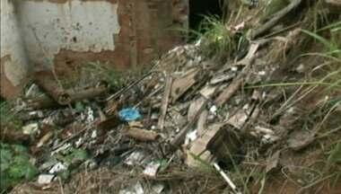 Controle de pragas urbanas recebe 150 chamadas por mês em Cachoeiro, ES - Os dados são do ano de 2015.