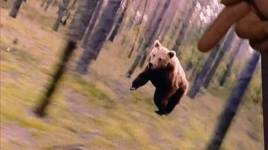 Detetive Virtual desvenda vídeo de ciclista perseguido por urso - O especialista em efeitos virtuais Luís Carona explica que há pequenos indícios de que é uma montagem. O vídeo é um trabalho de computação gráfica de um ucraniano.