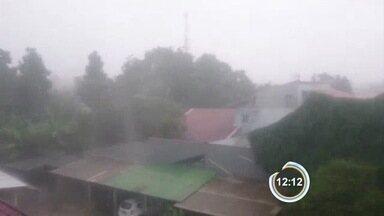 Vento em Taubaté chegou a 64 km/h durante a chuva - Tempestade também causou problema na cidade.
