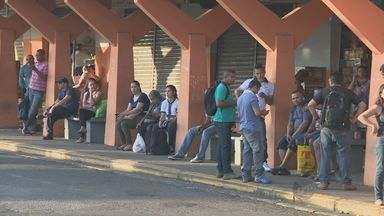 Paralisação de ônibus causa transtornos aos usuários do transporte coletivo na região - A paralisação aconteceu na manhã desta quarta- feira (8) nas cidades de Sumaré, Americana, Cosmópolis e Paulínia. Outras seis cidades também foram afetadas.