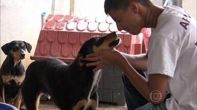 Agora ou Nunca apresenta a história de um jovem que ama os animais - Esdras é um adestrador de 20 anos, morador de São José dos Campos, que criou um projeto para cuidar de animais abandonados