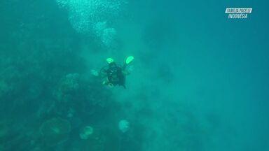 Mergulho Em Águas Cristalinas