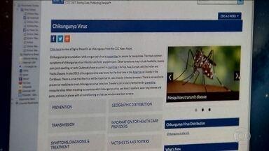 Pesquisadores alertam para o aumento de casos de chikungunya - Número de casos notificados da doença explodiu e já passa dos 12 mil. No ano passado inteiro, foi bem menor: 2,6 mil casos.