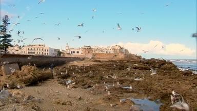 """Essaouira tem mercado de ervas afrodisíacas e porto de gaivotas - Cidade é conhecida por sua beleza misteriosa. Dizem que foi lá que Hitchcock se inspirou para escrever o roteiro do filme """"Os pássaros""""."""