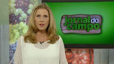 Jornal do Campo fala da situação da seca no Espírito Santo - O Jornal do Campo é domingo, às 7h5 da manhã, na TV Gazeta.