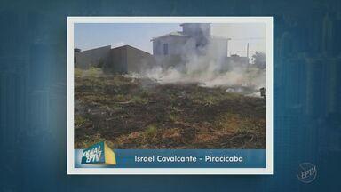 Internautas mostram vídeos de queimadas em cidades da região - Com o período de estiagem, número de queimadas aumenta.