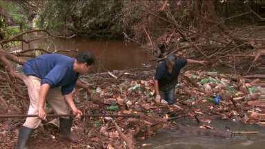 Secretaria do Ambiente começa a limpar o Ribeirão Lindóia em Londrina - A limpeza começou hoje. O lixo que se acumulou no ribeirão vem obstruindo o fluxo da água.