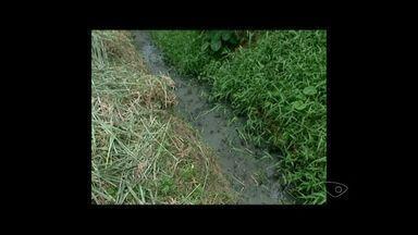 Córrego sujo incomoda moradores de Aracuí, em Castelo Sul do ES - Cesan disse que projeto para expansão da rede de esgoto está em fase de captação de recursos.