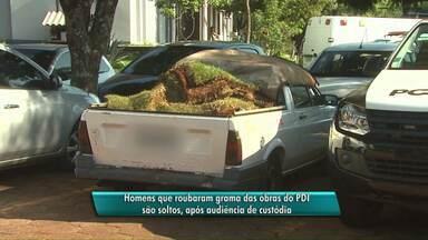 Homens presos por furtar grama da prefeitura são soltos - Eles vão responder em liberdade pelo crime de furto qualificado.