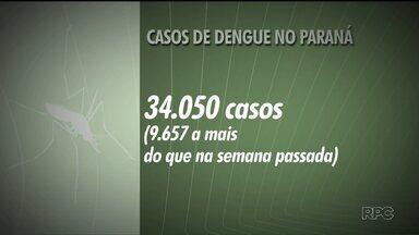 Quase dez mil casos de dengue são registrados em uma semana no PR - Agora o estado soma 34.050 casos da doença desde agosto de 2015. Mais seis mortes foram registradas no estado desde a última terça-feira.
