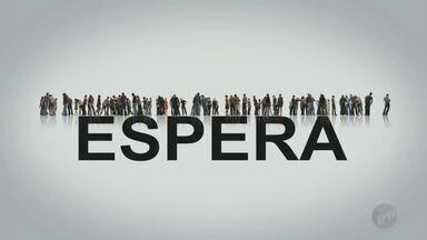 Série vai abordar as dificuldades de quem espera por serviço público - A série de reportagens será exibida a partir de quinta-feira (21) no Jornal da EPTV.