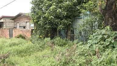 Casas abandonadas viram abrigo para criminosos e ponto de tráfico em Santarém - Várias casas estão abandonadas em Santarém e vem servindo como esconderijo para bandidos. População vive com medo e sem saber o que fazer ou para quem denunciar.