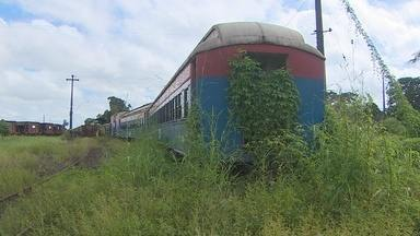 Governo realiza levantamento de ferrovia abandonada no Amapá - Governo realiza levantamento de ferrovia abandonada no Amapá