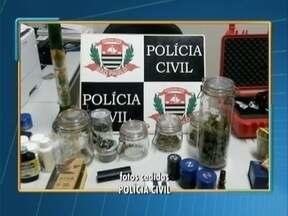 Polícia Civil apreende droga de alto poder alucinógeno - Entorpecente foi encontrado em Presidente Epitácio.