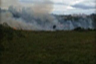 Mato pega fogo no bairro do Mogilar, em Mogi das Cruzes - A fumaça se espalhou por toda a área de vegetação seca, e pela pista, atrapalhando a visibilidade dos motoristas.