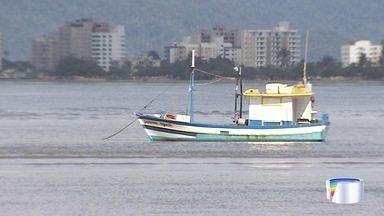 Pescadores de Caraguatatuba voltam à pescaria após fim do defeso do camarão - O período do defeso termina no dia 31 de maio
