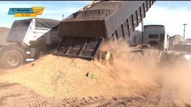 Polícia apreende quatro toneladas de maconha na região de Cascavel - Droga estava no meio de carga de aveia