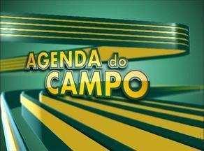 Confira as exposições agropecuárias na Agenda do Campo - Confira as exposições agropecuárias na Agenda do Campo