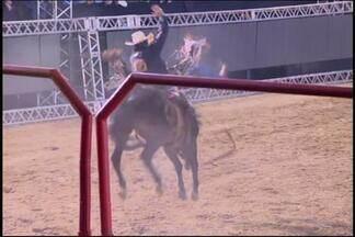 DivinaExpo realiza torneio de montaria em cavalos na modalidade cutiano - Competição acontece pela primeira vez no rodeio e é a única desse estilo em todo o país.