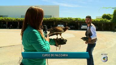 Cemafauna abre inscrições para curso de Falcoaria - O curso acontece nos dias 11 e 12 de junho com carga horária de oito horas no Campus de Ciências Agrárias da Univasf.
