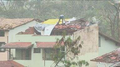 Fenômeno chamado de microexplosão deixa rastro de destruição em Campinas - Ventos fortes desceram ao solo a mais de 100 km/h. Muitas casas acabaram completamente destruídas.