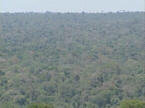 Moção de repúdio contra privatização de parque é aprovada - Documento sobre o Morro do Diabo foi votado em Teodoro Sampaio.