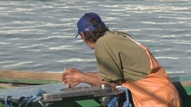Governo Federal libera pesca da tainha para 40 embarcações; só 3 são de SC - Governo Federal libera pesca da tainha para 40 embarcações; só 3 são de SC