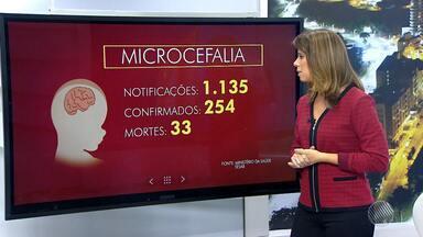 Aumenta número de casos de microcefalia no estado - Até o momento, 1.135 casos foram notificados e 254 confirmados.