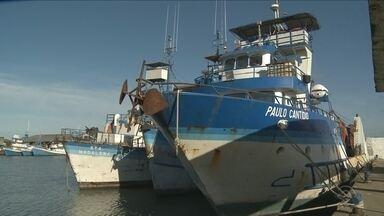 Ministro da Agricultura descarta liberação de novos alvarás para a pesca da tainha - Ministro da Agricultura descarta liberação de novos alvarás para a pesca da tainha