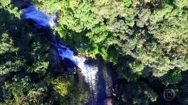 Homem planta sozinho uma floresta no meio da Serra da Mantiqueira - Seu Antônio cultivou mata com árvores nativas durante 43 anos. Com o tempo, nascentes d´água se transformaram em oito cachoeiras no local.