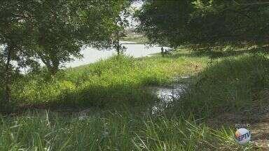 Moradores reclamam de lagoa poluída por esgoto no bairro São Domingos, em Campinas - De acordo com eles, a situação esta do mesmo jeito há anos e nada foi feito pela prefeitura.