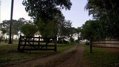 Empreendedor investe no turismo rural - Em Campo Grande, uma professora aproveitou a fazenda para investir.