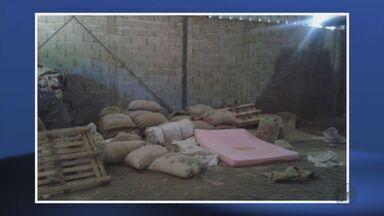 Homens armados invadem fazenda e roubam café em Divisa Nova, MG - Homens armados invadem fazenda e roubam café em Divisa Nova, MG