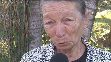 Sobrevivente de acidente já está na casa da avó - Maria Fernanda, de 19 dias, sobreviveu à tragédia na BR-277. Seis pessoas morreram, inclusive o pai e a mãe dela.
