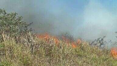 Polícia Ambiental inicia operação de combate a queimadas em São Carlos - Tempo seco aumenta os riscos de incêndios e, consequentemente, o nº de chamados.