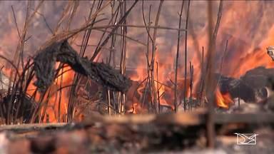 Período de maior risco de queimadas preocupa agricultores no sul do Maranhão - Segundo dados do Inpe, Maranhão é o quarto estado com maiores índices de focos de incêndio.