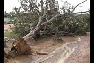 Ventania atinge zona rural de Santarém e provoca estragos - Segundo os moradores, os ventos e a chuva forte duraram menos de cinco minutos, e deixaram muitos prejuízos na última quarta-feira (27).