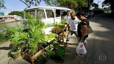 Hortas ocupam espaços improváveis, como laje e Kombi - Em Rio Novo (MG), uma laje inteira foi tomada de verde. No Rio de Janeiro, projeto de educação ambiental tem horta sobre rodas..