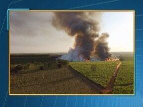 Incêndios são registrados no Oeste Paulista - Bombeiros tiveram trabalho no fim de semana.