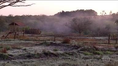 Frio que atingiu o sul do Brasil chega a Mato Grosso do Sul - O frio que atingiu o sul do Brasil, no fim de semana, agora derrubou as temperaturas em Mato Grosso do Sul. Em Ponta Porã, os termômetros estão marcando 6ºC, mas a sensação térmica é de 3ºC.