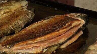 Pesquisa identifica mudanças nos peixes cevados com soja - A instalação de cevas permanentes nos rios continua, apesar de ser proibida. Uma pesquisa mostra que a oferta de soja podealterar o sabor ea coloração da matrinxã.